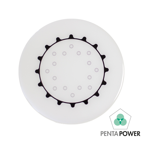 Penta Power Home Tag white raises the energy in your home